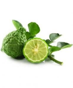 Living Libations -Bergamot Essential Oil