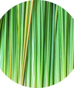 Living Libations Vetiver Essential Oil