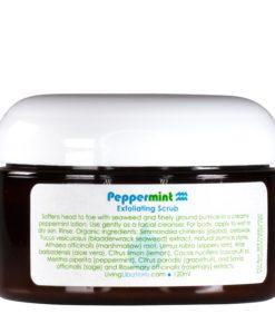 Peppermint Exfoliating Scrub - Living Libations