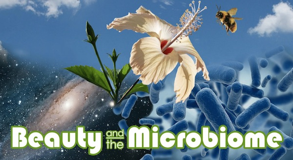 Microorganisms: More Than Meets the Eye - Nadine Artemis