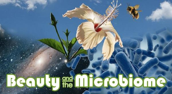 Microorganisms: More Than Meets the Eye - Nadine Artemis