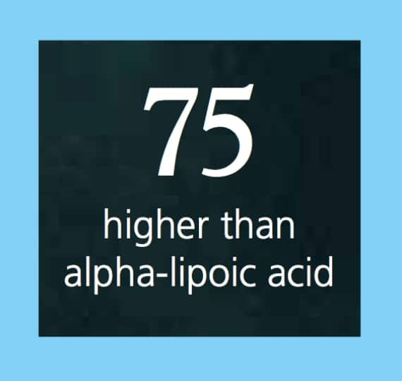 Antioxidant Action - Alpha Lipoic - Be in Blossom