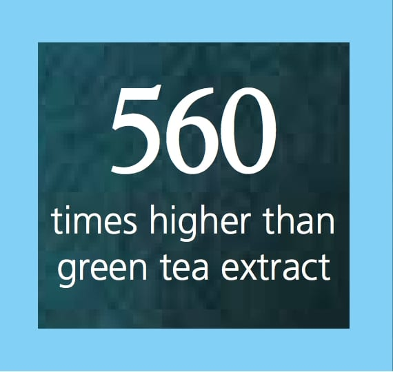 Antioxidant Action - Green Tea Extract - Be in Blossom