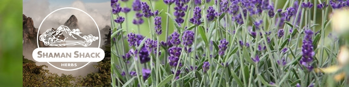 Shaman Shack - Organic Herbs