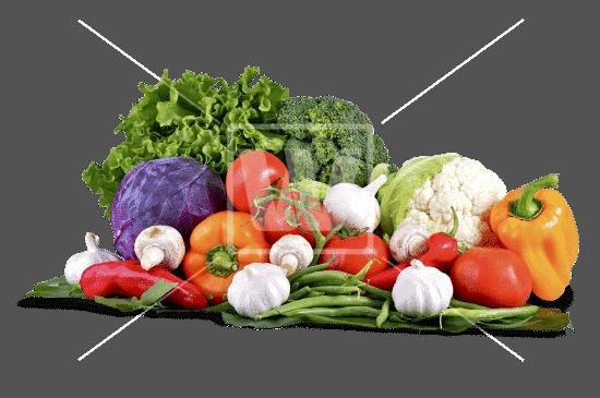 Raw Food Lifestyle