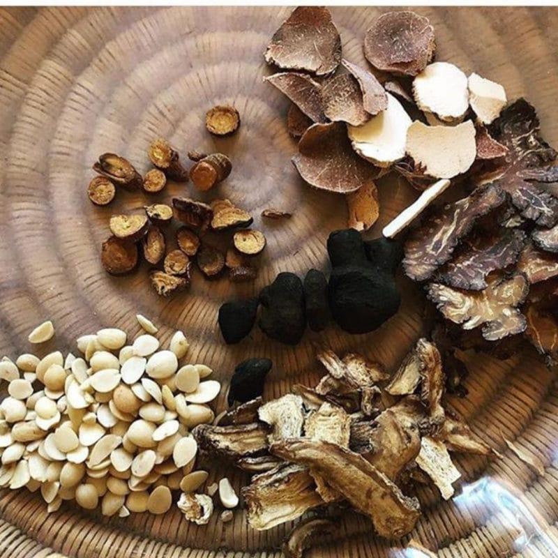 Rehmannia Rehmannia Dean Thomas - Taoist Tonic Herbalist