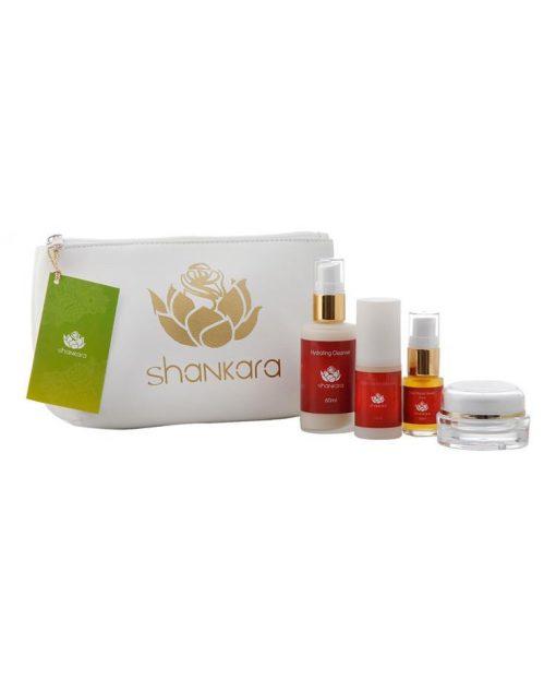 Skincare Travelkit Pitta - Natural Ayurveda Skincare - Shankara Naturals