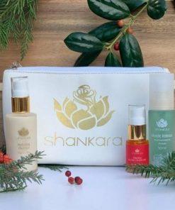 shankara 1 the gentleman's kit